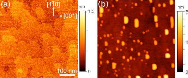 Atomic force tomograph of quantum dots